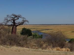 Grenzübergang Botswana
