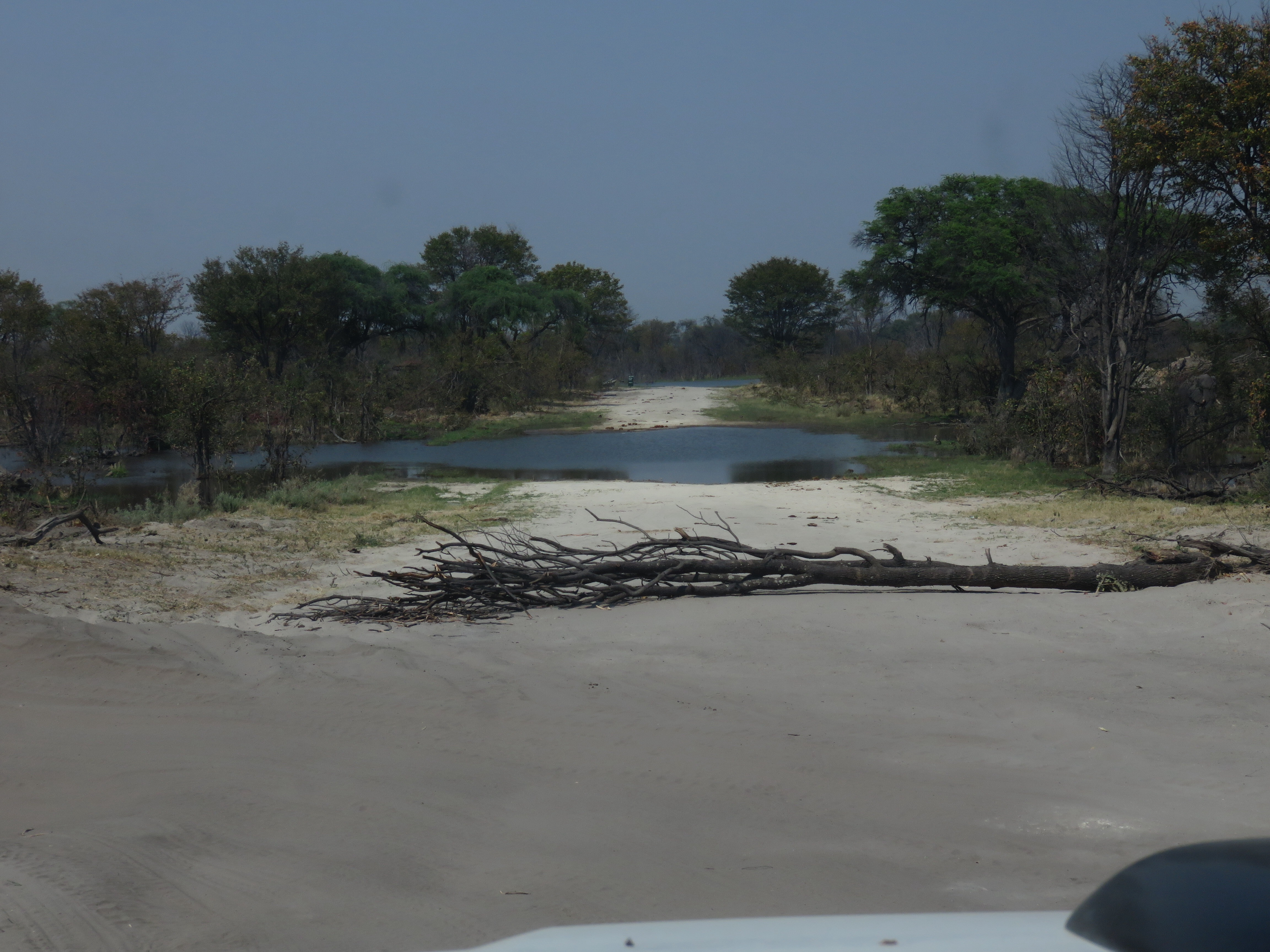 Audi camp botswana photos