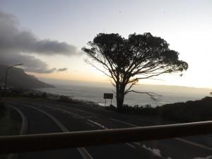 vom Tafelberg